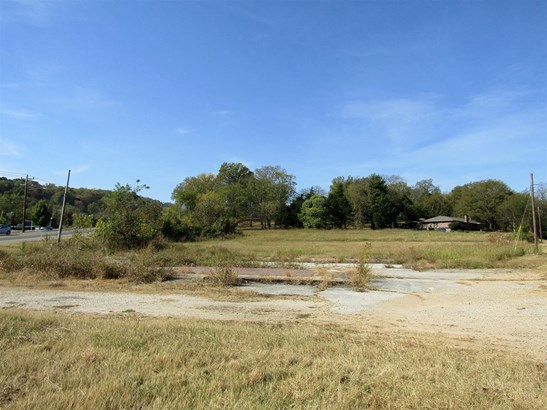 Lots and Land - Columbia, TN (photo 2)