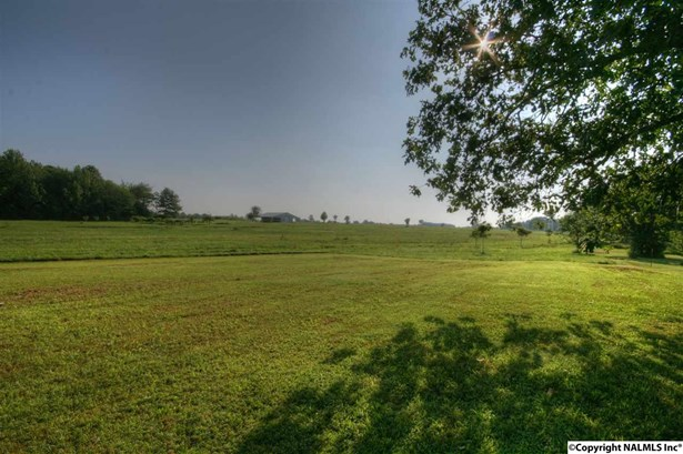 Rental - HAZEL GREEN, AL (photo 3)