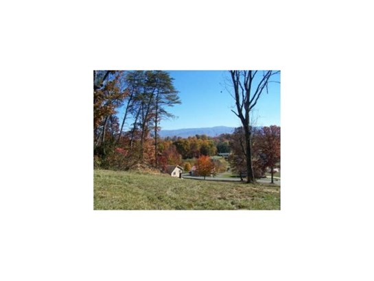 Lots and Land - Greeneville, TN (photo 1)