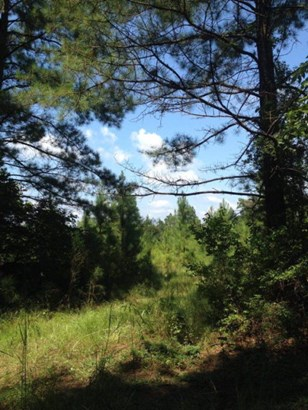Lots and Land - McCall Creek, MS (photo 5)