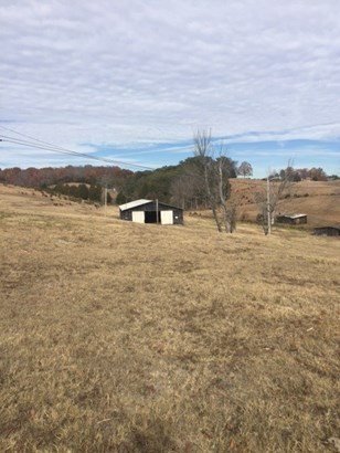 Lots and Land - Bulls Gap, TN (photo 4)