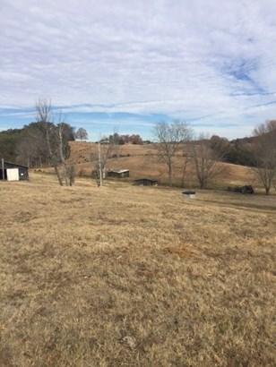 Lots and Land - Bulls Gap, TN (photo 5)