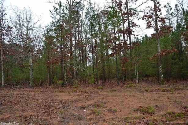 Lots and Land - Greers Ferry, AR (photo 4)