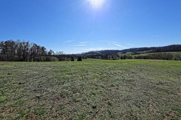 Lots and Land - Rutledge, TN (photo 4)