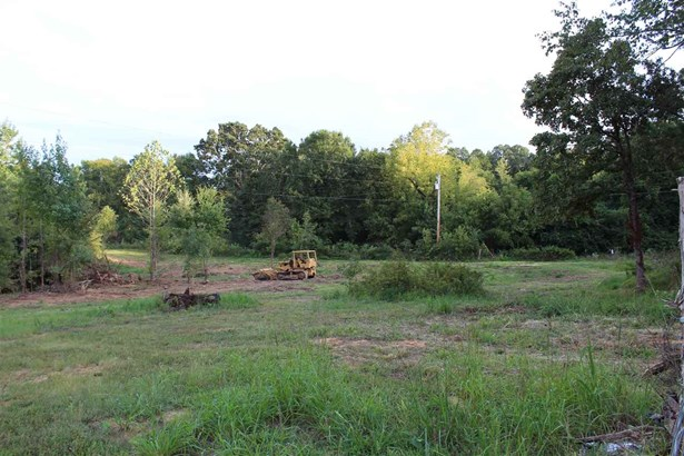 Lots and Land - Middleton, TN (photo 3)