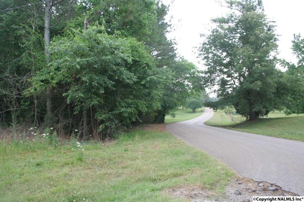 Lots and Land - ELKMONT, AL (photo 3)