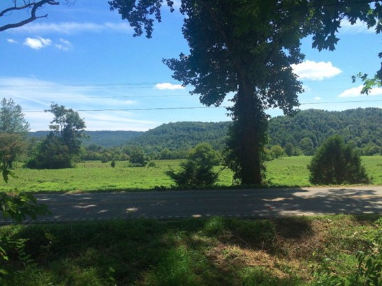 Lots and Land - COOKEVILLE, TN (photo 4)