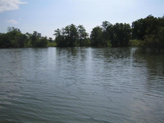 Lots and Land - Mooresburg, TN (photo 4)
