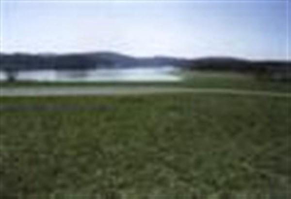 Lots and Land - Mooresburg, TN (photo 5)