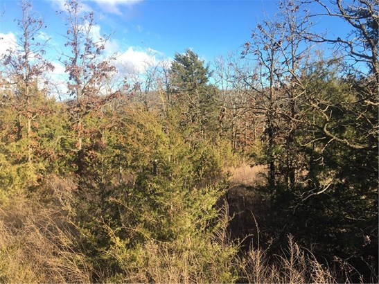 Lots and Land - West Fork, AR (photo 2)