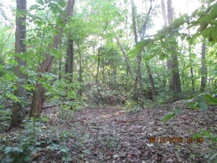 Lots and Land - Rossville, GA (photo 1)