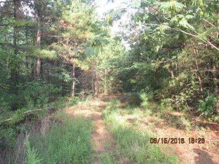 Lots and Land - Rossville, GA (photo 2)