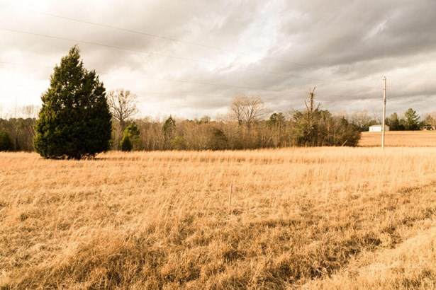 Lots and Land - Amory, MS (photo 2)