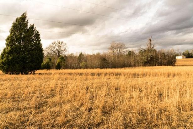 Lots and Land - Amory, MS (photo 4)
