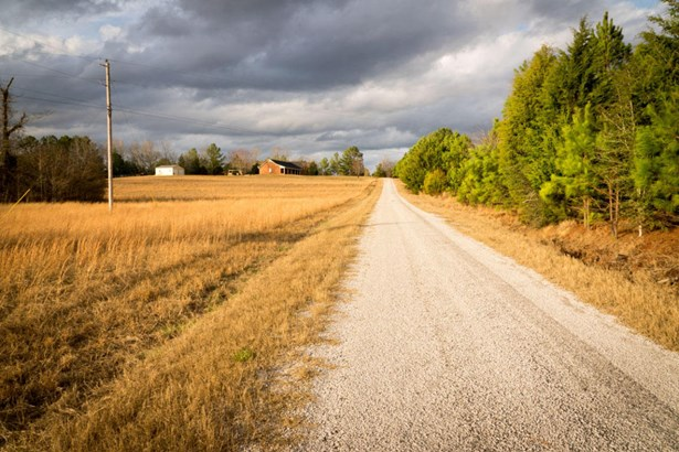 Lots and Land - Amory, MS (photo 5)
