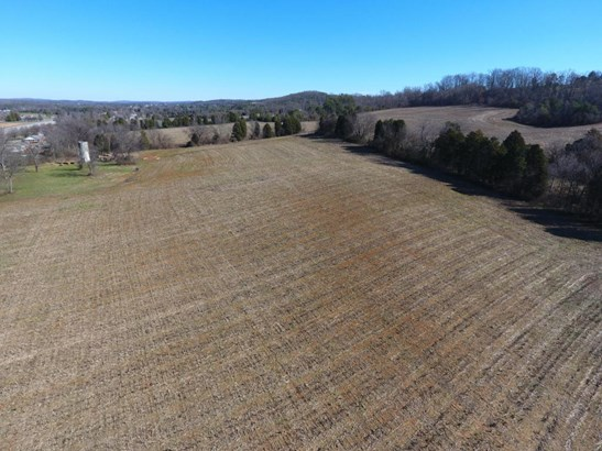 Lots and Land - Greenback, TN (photo 1)