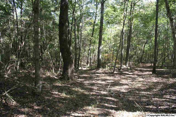 Lots and Land - ELKMONT, AL (photo 4)
