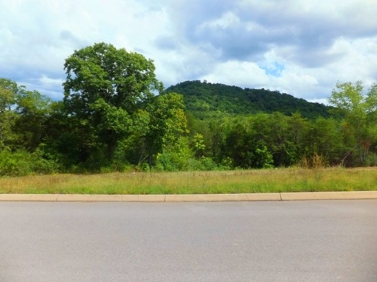 Lots and Land - Morristown, TN (photo 5)