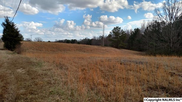 Lots and Land - GUNTERSVILLE, AL (photo 3)