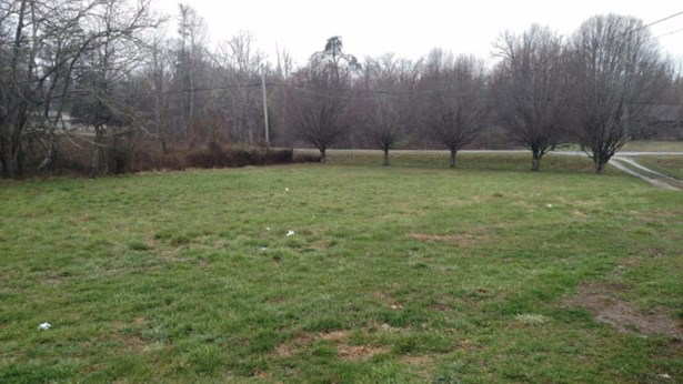 Residential/Single Family - Deer Lodge, TN (photo 2)