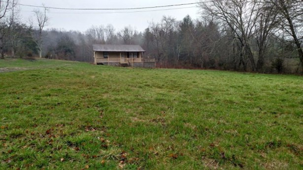 Residential/Single Family - Deer Lodge, TN (photo 3)