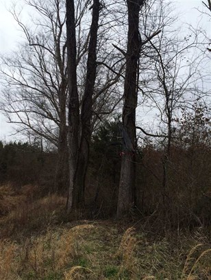 Lots and Land - Tiplersville, MS (photo 3)