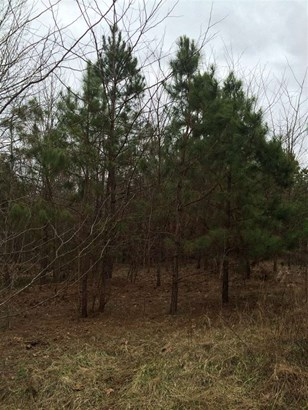 Lots and Land - Tiplersville, MS (photo 4)