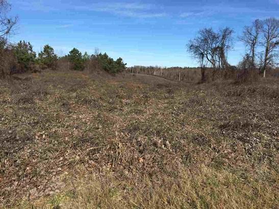 Lots and Land - Lexington, TN (photo 3)