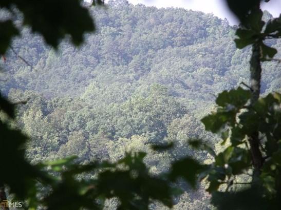 Lots and Land - Ranger, GA (photo 4)