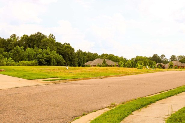 Lots and Land - Pearl, MS (photo 4)