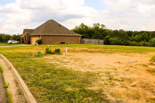 Lots and Land - Pearl, MS (photo 5)