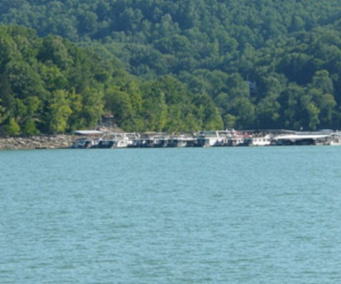 Lots and Land - SMITHVILLE, TN (photo 5)