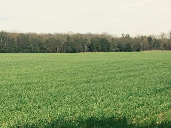 Lots and Land - Christiana, TN (photo 1)