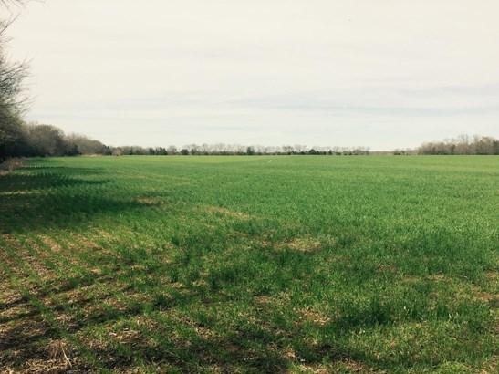 Lots and Land - Christiana, TN (photo 4)