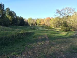 Lots and Land - Apison, TN (photo 1)