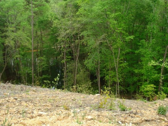 Lots and Land - Waterloo, AL (photo 3)