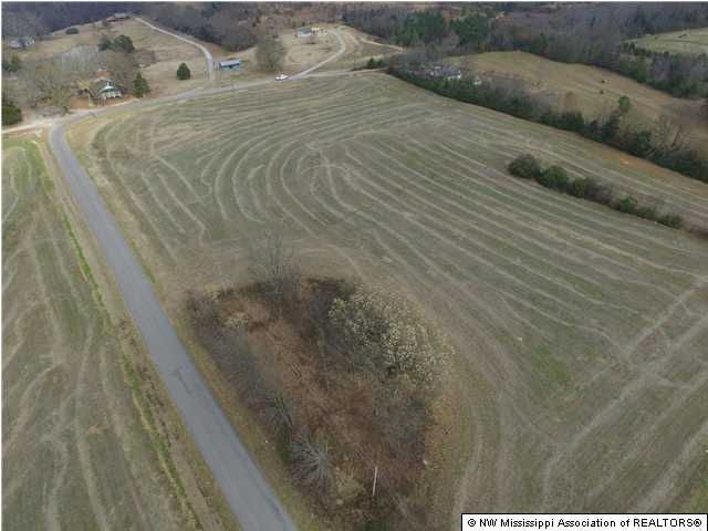 Lots and Land - Ashland, MS (photo 1)