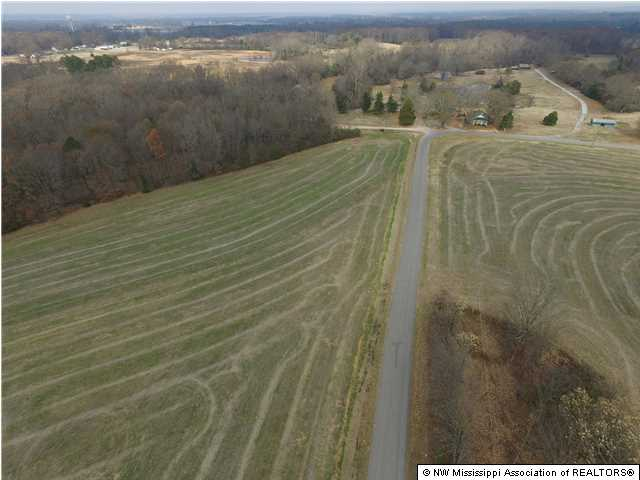 Lots and Land - Ashland, MS (photo 3)