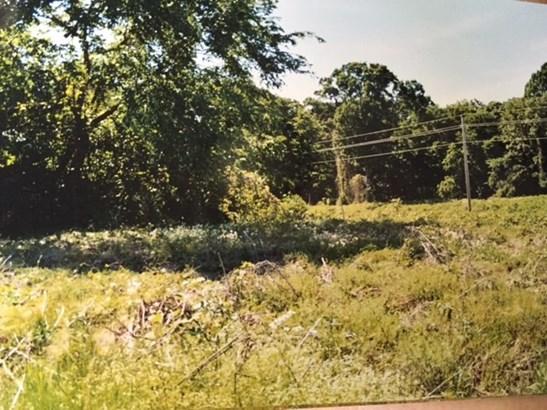 Lots and Land - Williston, TN (photo 1)