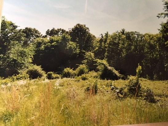 Lots and Land - Williston, TN (photo 3)