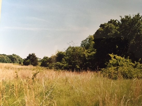 Lots and Land - Williston, TN (photo 4)