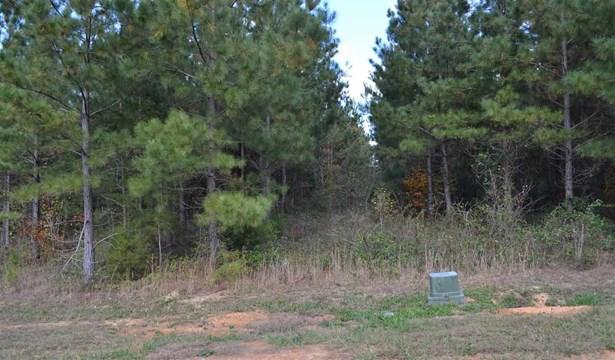 Lots and Land - Ocoee, TN (photo 4)