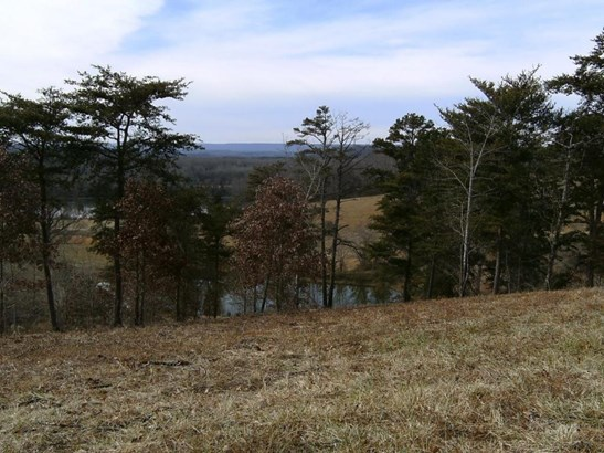 Lots and Land - Decatur, TN (photo 4)