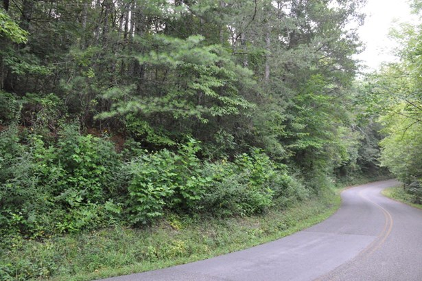 Lots and Land - Reliance, TN (photo 1)