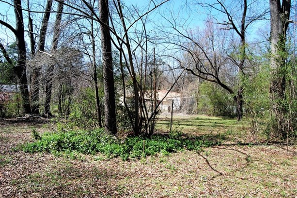 Residential/Single Family - Florence, AL (photo 4)