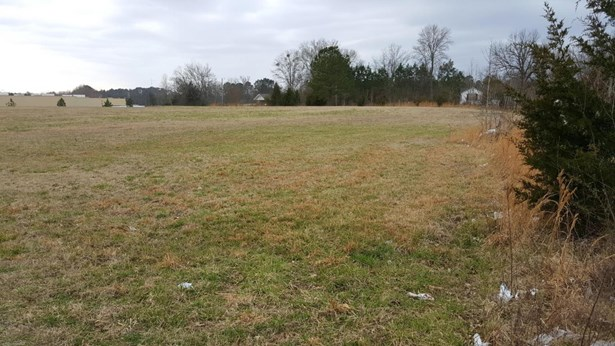 Lots and Land - Booneville, MS (photo 2)