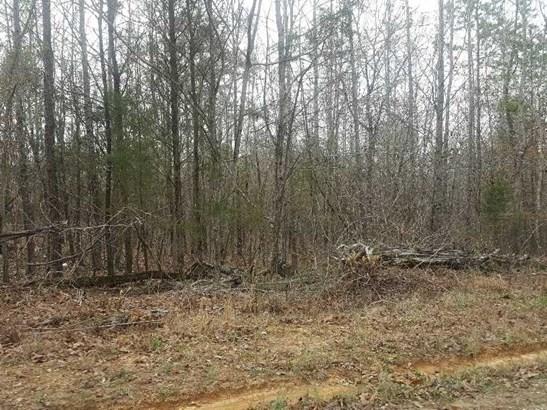 Lots and Land - Scotts Hill, TN (photo 1)