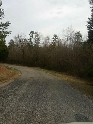 Lots and Land - Scotts Hill, TN (photo 2)