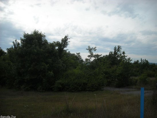 Lots and Land - Clinton, AR (photo 4)