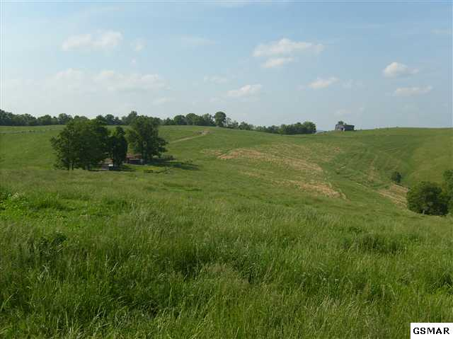 Lots and Land - Thorn Hill, TN (photo 2)